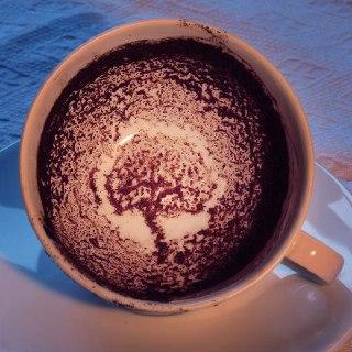 درخت در فال قهوه معنی درخت در فال قهوه درخت در فنجان فال واقعی قهوه