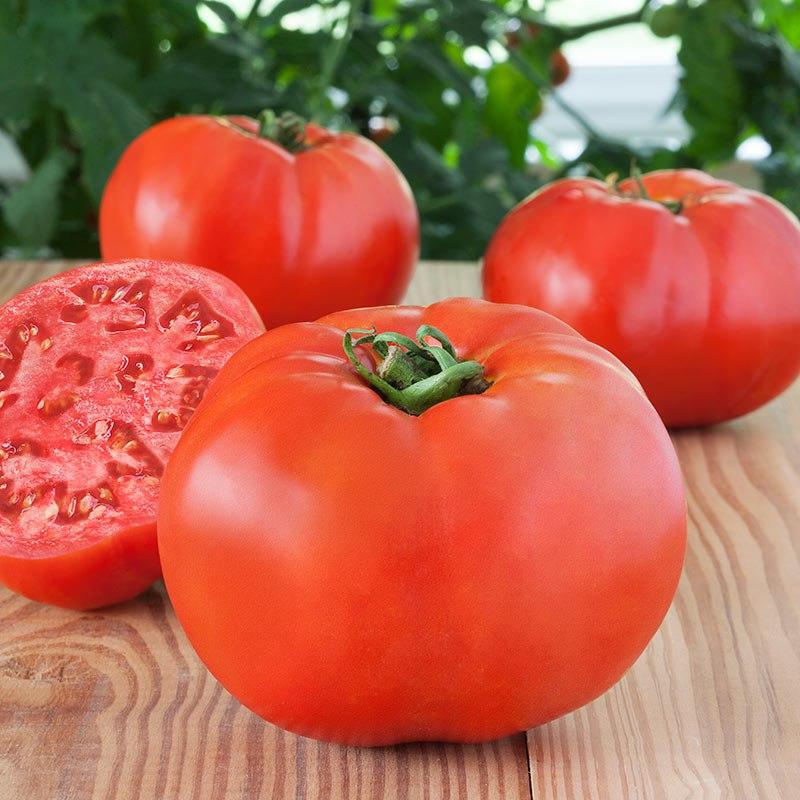 تعبیر خواب گوجه