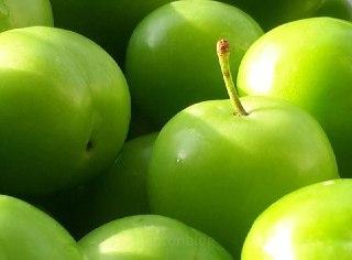 آلو-سبز-گوجه-سبز