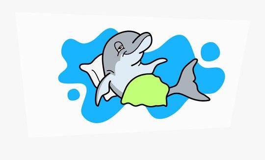 آیا دلفین ها می خوابند؟