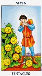 seven of pentacles tarot
