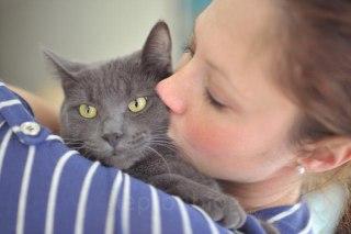 طول-عمر-گربه-گربه-سیاه-گربه-با-نمک