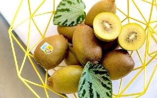 کیوی زرد خواص کیوی زرد کیوی طلایی