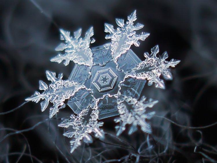 برف در خواب دونه برف دانه برف در خواب تعبیر خواب واقعی ریزش برف بارش برف