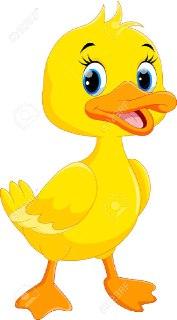 اردک در فال قهوه مرغابی در فال قهوه فال حیوانان فال واقعی
