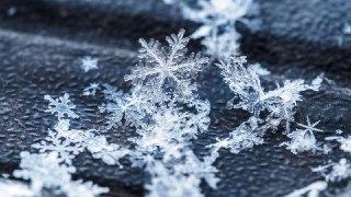 برف در فال قهوه