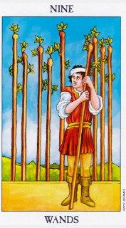 nine of wands tarot