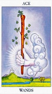 ace of wands tarot