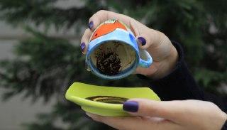 سوسک در فال قهوه دیدن سوسک در فال قهوه تعبیر سوسک در فال قهوه فال واقعی قهوه