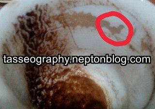 خفاش در فال قهوه آموزش فال قهوه